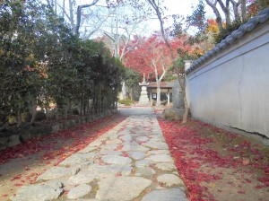 Saikouji Temple 2